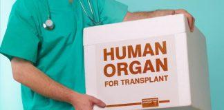 organ-transplant